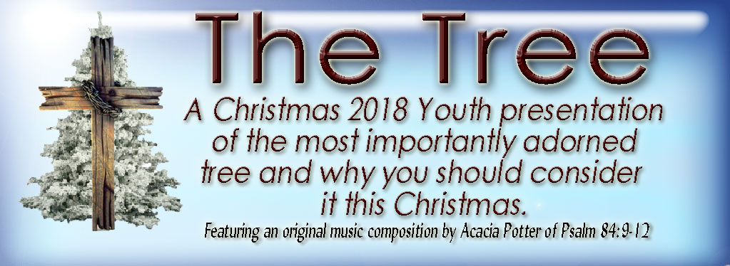 Grace Baptist Church, Eaton Rapids, MI, 2018, Youth Christmas Program, Christmas, KJV